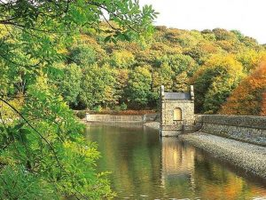 Linacre Reservoirs